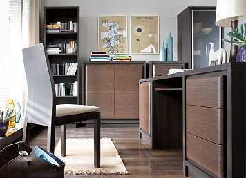 Мебель для кабинетов AREKA