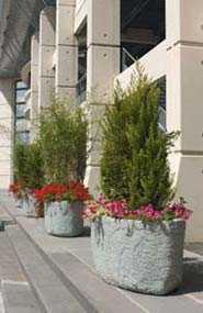 Кадки для крупномерных деревьев и кустарников