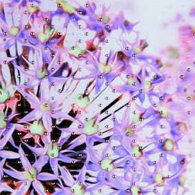Плитка керамическая Престиж фиолетовая