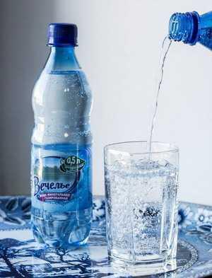 Вода минеральная лечебно-столовая 'Вечелье' хлоридно-сульфатная натриево-кальциевая газированная 0,5л