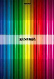 Бизнес-блокнот 96л А5ф 80 гр/кв.м клетка твердый переплет Color Line