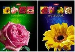 Блокнот 64л А6 4-х цветный блок на клею серия Магия цветов