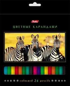 Карандаши цветные Hatber 24 цв. ДИКИЙ МИР