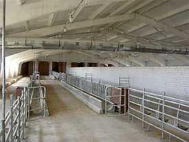 Оборудование стойловое для молодняка крупнорогатого скота