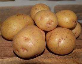 Картофель семенной Волат 35-55мм (5кг)