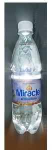 Вода питьевая негазированная 'MAQUA' обогащенная янтарной кислотой Isolife Aqua Miracle 0,5л