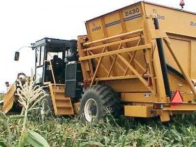 Комбайн для уборки сладкой кукурузы и кукурузы на семена OXBO 2430