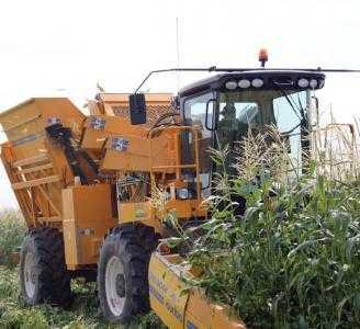 Комбайн для уборки сладкой кукурузы и кукурузы на семена OXBO 2485