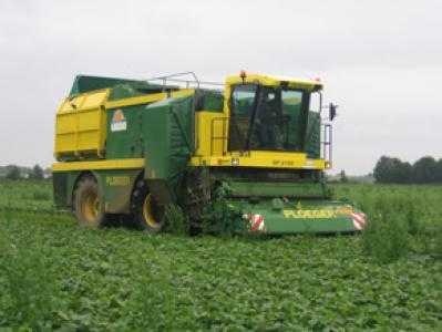 Комбайн для уборки бобовых PLOEGER BP 2100