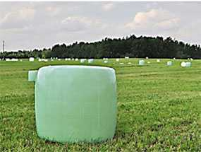 Агрострейч пленка, 750мм х 25мкм х 1500м - ИТЕРАПЛАСТ БАЛТИК (Беларусь)