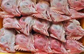 Голова куриная (1 кг/пак.) - ГЛУБОКСКИЙ КОМБИКОРМОВЫЙ ЗАВОД (Беларусь)