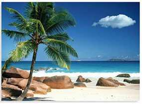 Декор (фотография) на холсте Praslin beach Seychelles, 50*70 см, INNOVA (Китай)