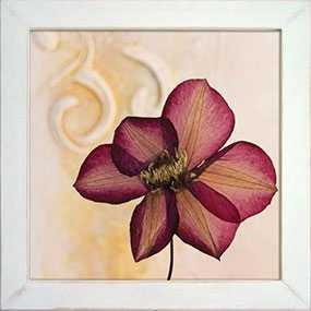 Декор (рамка декоративная) Pressed Flower, 40*40 см, INNOVA (Китай)