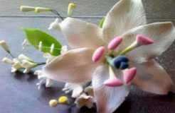 Изделия в виде цветов из мастики (цветочная композиция) 11110