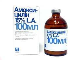 Препарат ветеринарный Амоксициллин 15%, 100 мл - INVESA