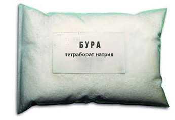 Бура (натрия тетраборат), мешок 25 кг (Турция)
