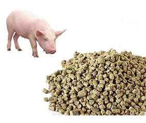 Комбикорм-концентрат эконом-класса для свиней ЭК-С.- СМОРГОНСКИЙ КОМБИНАТ ХЛЕБОПРОДУКТОВ