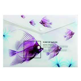 Папка-конверт пластиковая OPTIMA X-RAY на кнопке, формат А4