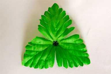 Лист искусственный ЛС 12 Лист хризантемы