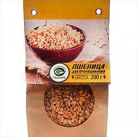 Пшеница продовольственная для проращивания