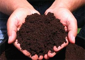 Торф для приготовления компостов СТБ 832-2001