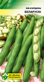Семена бобов Белорусские