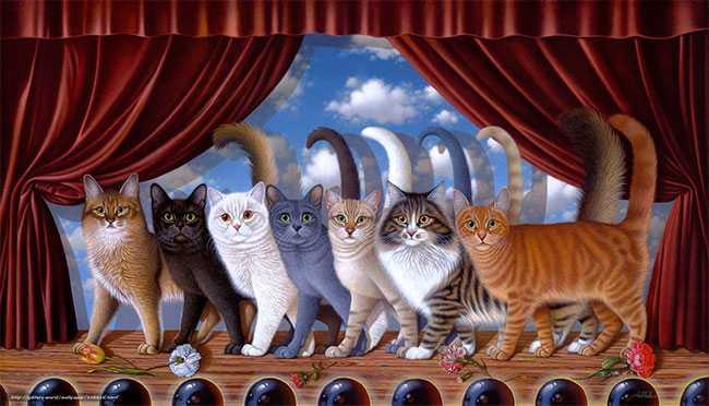 24 – 25 февраля Зимний международный чемпионат породистых кошек