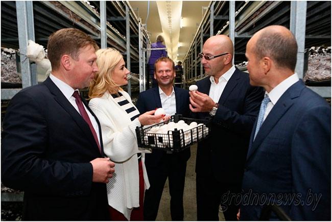 В Щучине открыли производство по выращиванию шампиньонов