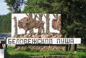 Экскурсия в Национальный парк Беловежская пуща