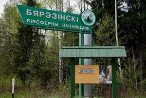 Экскурсия в Березинский биосферный заповедник