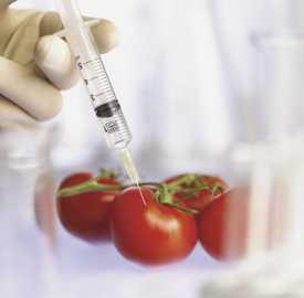 Проведение санитарно-гигиенических, токсикологических, радиологических исследований пищевых продуктов