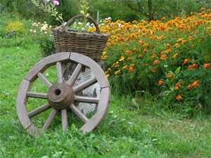 Отдых в агроусадьбе Беларуси