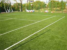 Устройство специального и спортивного газона