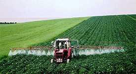 Химическая обработка посевов