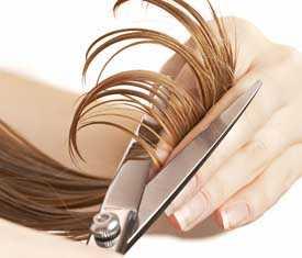 Сертификация услуг парикмахерских