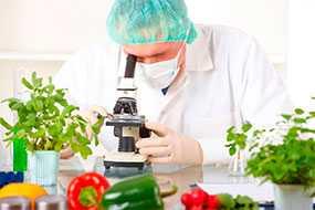 Проведение санитарно-гигиенического исследования пищевых продуктов