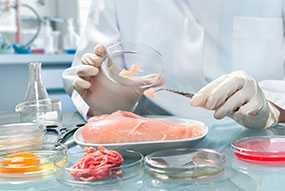 Проведение токсикологического исследования пищевых продуктов