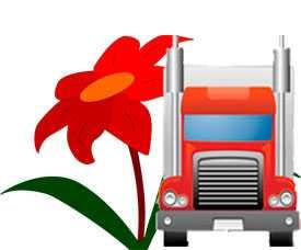 Автомобильная перевозка цветов