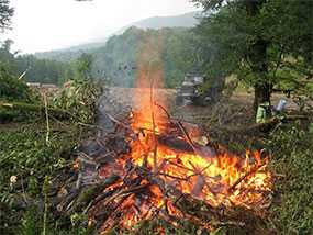 Сбор порубочных остатков в кучи или валы с последующим их сжиганием