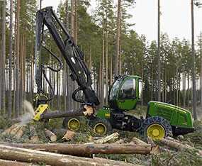 Валка леса