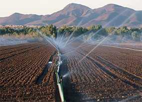 Эксплуатация мелиоративных и водохозяйственных систем