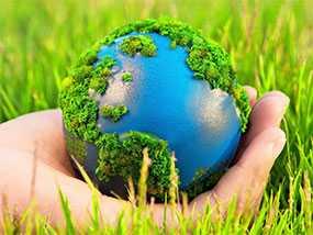 Подготовка проектов приказов (распоряжений) и другой локальной нормативной документации предприятия, касающейся деятельности в области охраны окружающей среды
