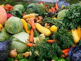 Реализация овощных культур
