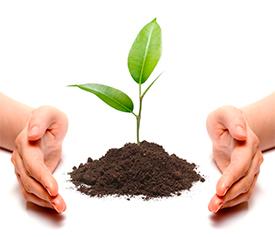 Снабжение предприятий средствами защиты растений