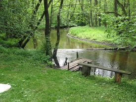 Экологический туризм - пешие и велосипедные прогулки